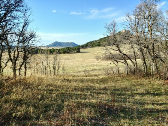 Spruce Mountain Open Space